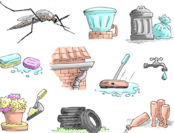 All agaisnt dengue!