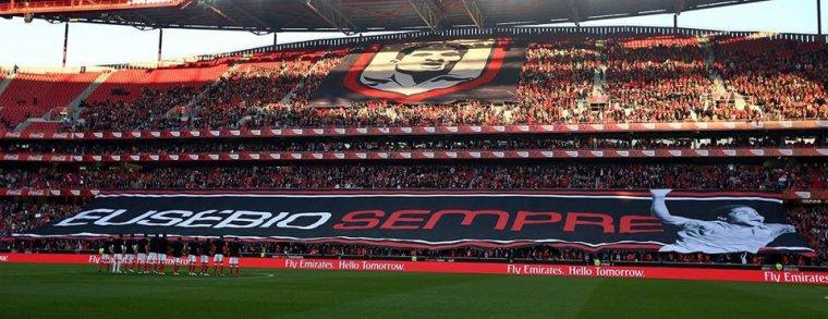 Liga Portuguesa 2014/15 (16ª Jornada) : SL Benfica vs. V. Guimarães