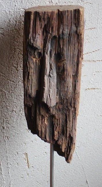 des petits morceaux de bois trouvés en forêt qui ont pris la grosse tête