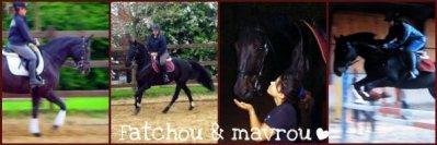 maverick (l)
