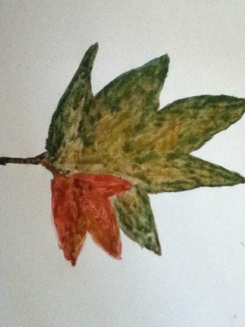 feuilles d'automne : )