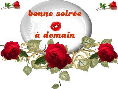 BONNE SOIREE LES AMIS