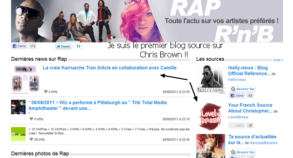 Je suis le premier Blog Source sur Chris Brown !