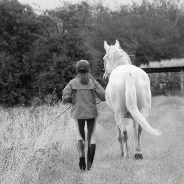 Gipsy et Neige - Gillian- Mettez vous a la place de votre animal : apprécierez vous la vie que vous avez choisie pour lui? N'oubliez jamais que votre animal n'a pas choisi de vivre avec vous : c'est vous qui l'avez choisi...