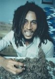 Photo de Rastafari-Vincent