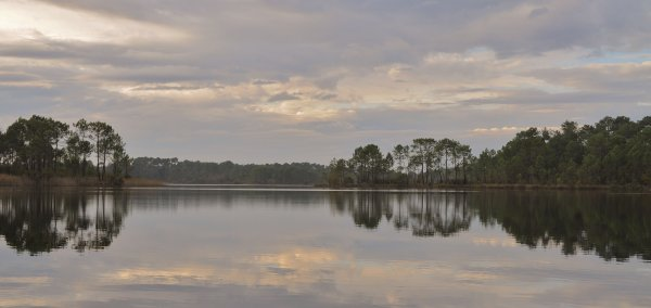 """""""La nature n'est pas un paysage statique sur une toile tendue. C'est un visage vivant marqué par toutes nos sensations, nos larmes et nos cris, et qui nous tire une galaxie de langues !"""" John Cowper Powys"""