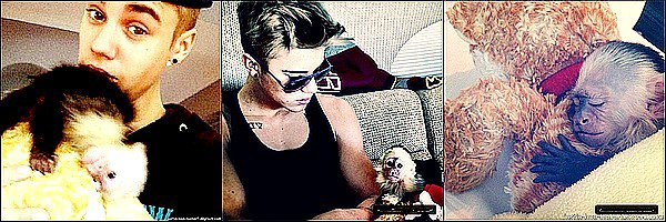 «À partir du moment où tu sais qui tu es, tu n'as plus rien à prouver.» - Justin Bieber