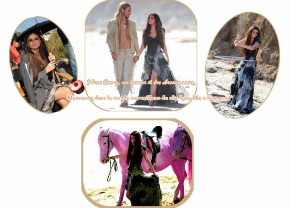 Selena Gomez, un homme et des chevaux roses, bienvenue dans le monde merveilleux du clip de love you like a love song