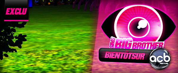 Big Brother Sims: Première photo exclusive !