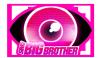 BigBrotherSims