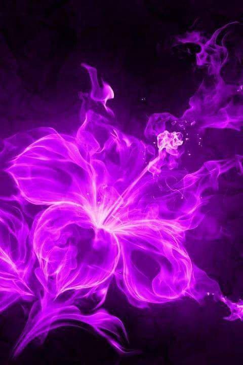 trés belle fleure