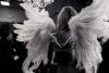 Vole mon ange