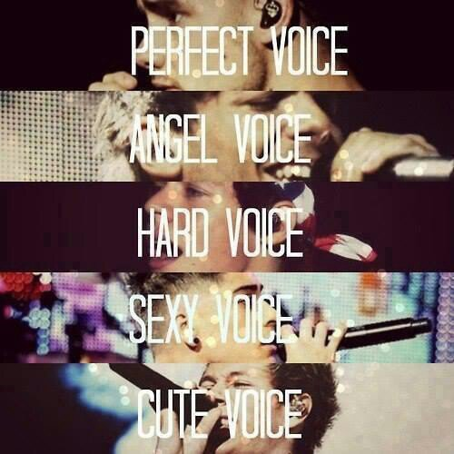 Voice...