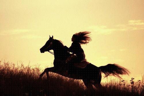 L'équitation, c'est toute ma vie...