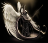 je suis l'ange vengeur,pour venger toutes les femmes victimes des arnaques,tenez le vous pour dit