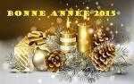 je vous souhaite a tous une bonne et heureuse année 2015