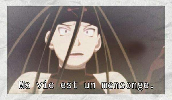"""Fan-Fiction N°1 : """"Ma vie est un mensonge""""."""