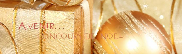 A venir : Concours de noel !