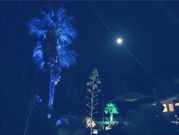 Instagram Bill Kaulitz :  Bonjour #palmsprings bonjour #coachella !!! #premièrenuit #longweekends#c'estparti