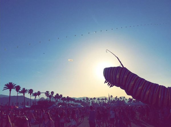 Instagram Bill Kaulitz  : Happy Coachella!!!!