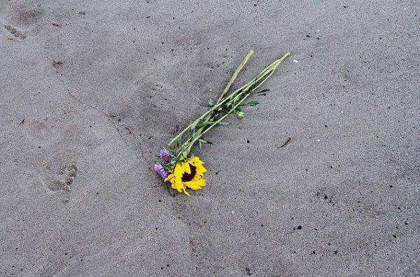 Instagram Bill kaulitz : trésor sur la plage