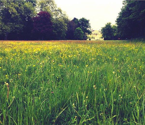 Instagram Georg Listing : #nature #eden