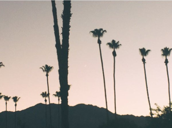 instagram Bill kaulitz : #palmsprings #chaleurdudésert