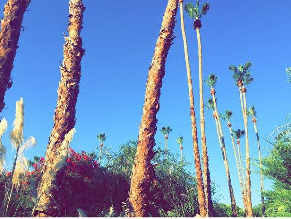 Instagram Bill kaulitz : 😎