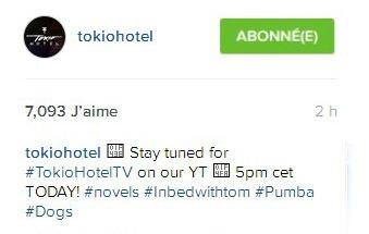 Instagram Tokio Hotel : Restez connectés pour le #TokioHotelTV sur notre YT à 17hrs AUJOURD'HUI!  #romans#au lit avec tom #Pumba #chiens