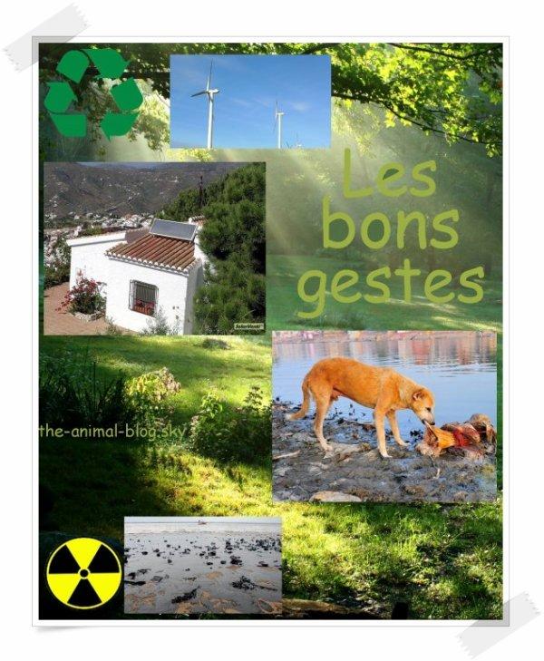 ♥LES BONS CONSEILS♥