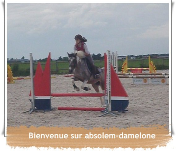 Bienvenue sur absolem-damelone