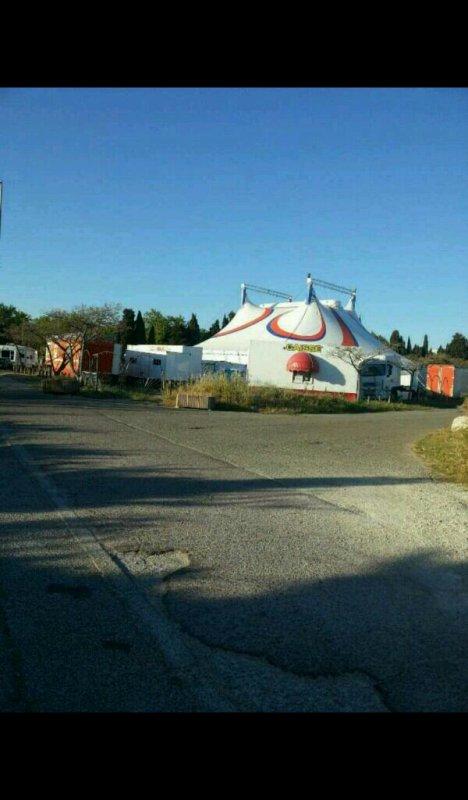 Fin du reportage du cirque royal kerwish