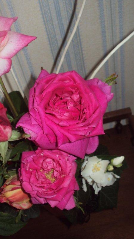 bouquets avec des roses du seringat