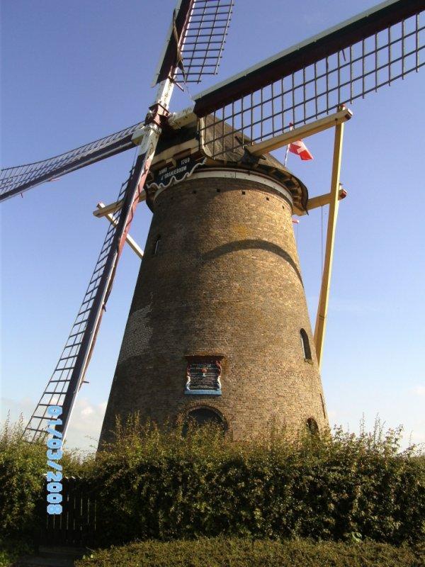 le moulin de Nieuwe tonge