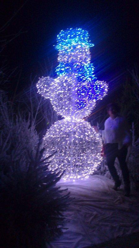Calais illumination de noël spécial walt disney