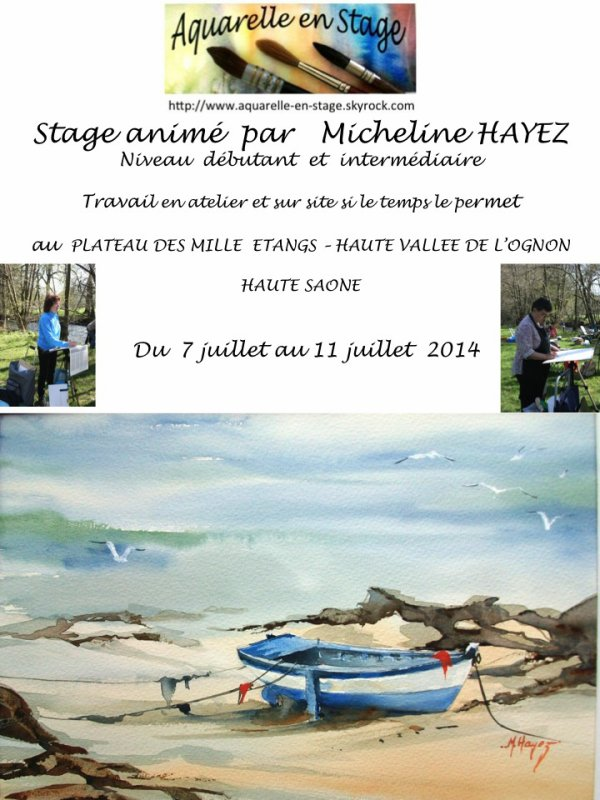 STAGE POUR 2014