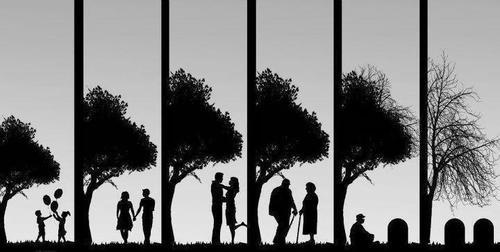 Chaque personne qu'on s'autorise à aimer, est quelqu'un qu'on prend le risque de perdre. - Grey's Anatomy