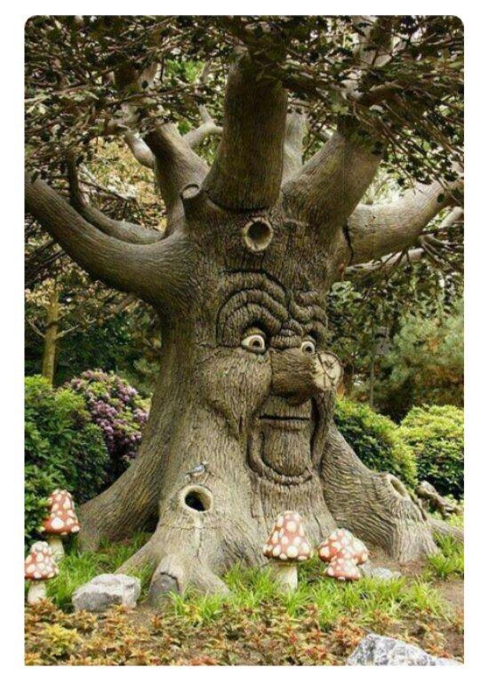 Sculpture sur les troncs des arbres