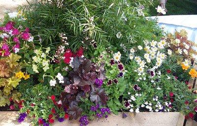 Jardins, Jardin : un peu de tout