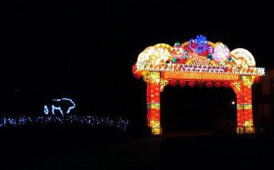 Lumières sauvages à Thoiry