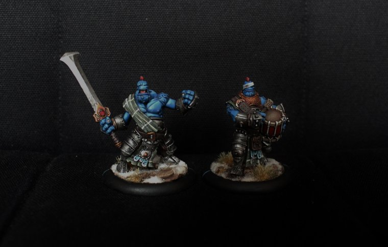 Trollblood Officers
