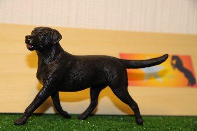 Breyer dogs à adopter