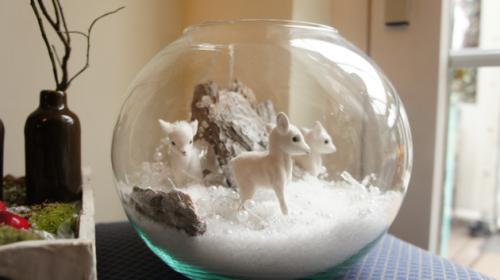 Mini terrarium d'hiver