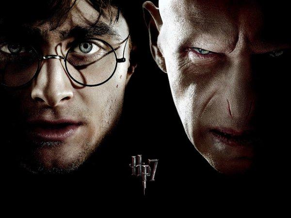 Catégorie n°1 : Harry Potter