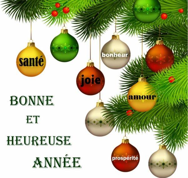 Bonne année 2013 à toutes et tous !