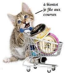 Bonne journée mes amies et amis, quel bazar de faire les courses dans plusieurs magasins je n'aime pas ça mais bon pas le choix ce n'est pas que pour moi, aller courage ce sera fait lol, bisous et à bientôt
