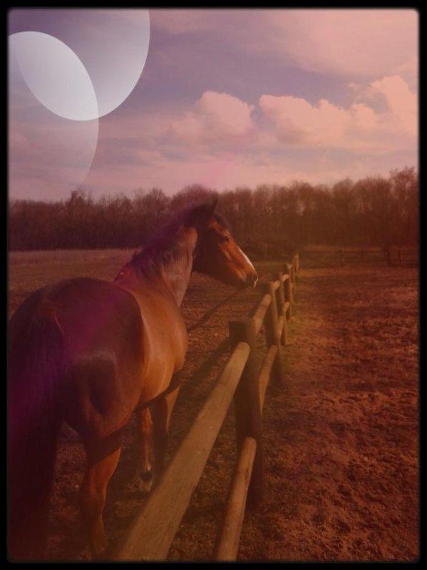 Le rayon de soleil de ma vie...♥