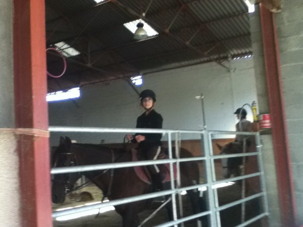 Les chevaux c'est toute ma ViE !!!