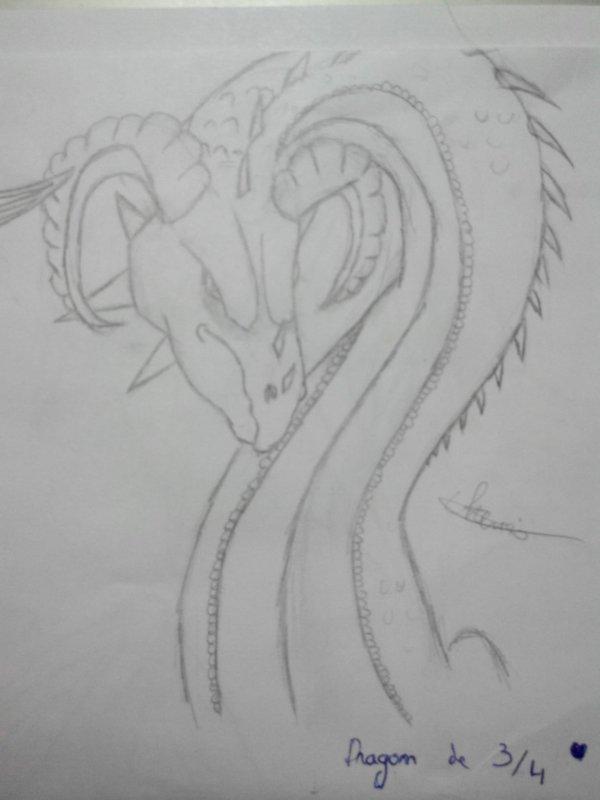 Dessins de 2 tête de dragon