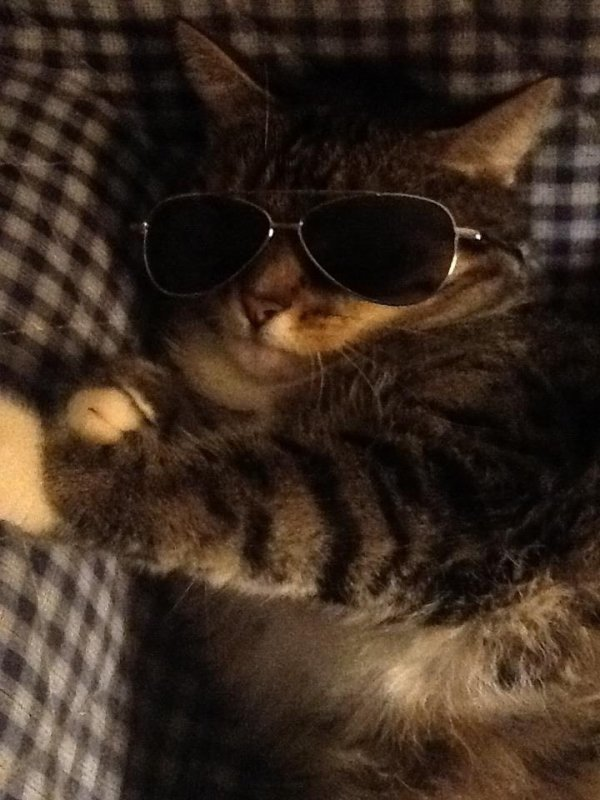 Ma petite Louna en mode rock'n'roll^^